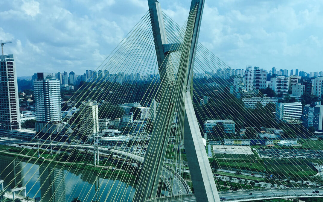 Update of the Foreign Direct Investment Registration with the Central Bank of Brazil